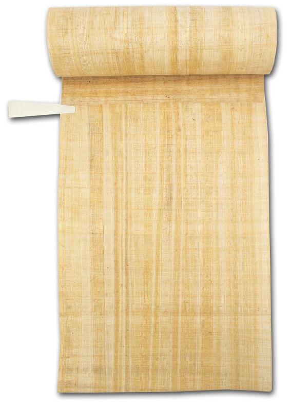papyrus shop papyrus schreibfedern g nstig bestellen. Black Bedroom Furniture Sets. Home Design Ideas
